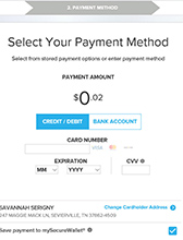 Step 6a Online Bill Process - Credit Card Payment Method