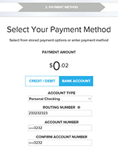 Step 6 Online Bill Process - Select Bank Payment Method